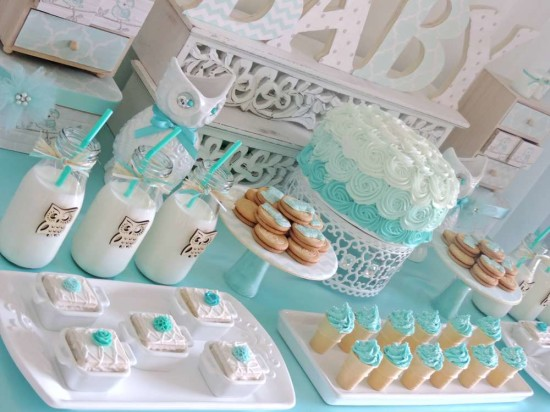 welcome-home-owl-baby-shower-ideas-dessert-table-idea
