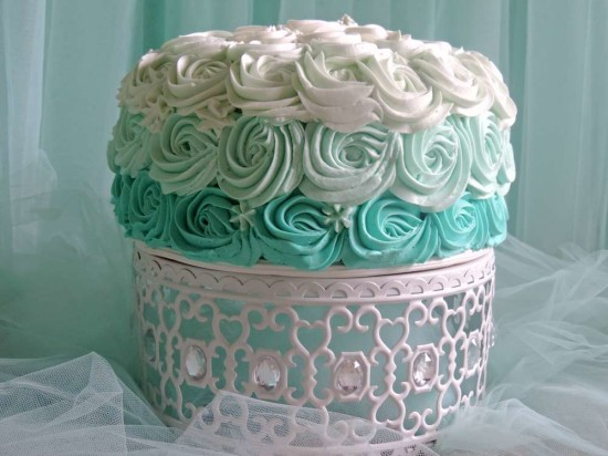 welcome-home-owl-baby-shower-ideas-ombre-cake