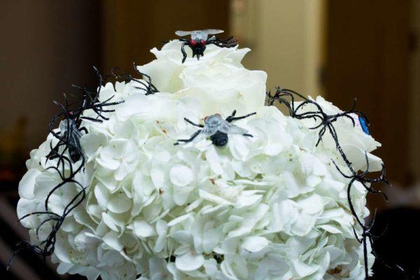 spooktacular-baby-shower-flies-flowers