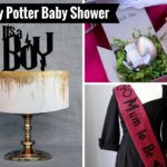 Harry Potter Baby Shower Decorations and Party Favors