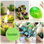 Succulent Baby Shower Decoration & Idea Collection