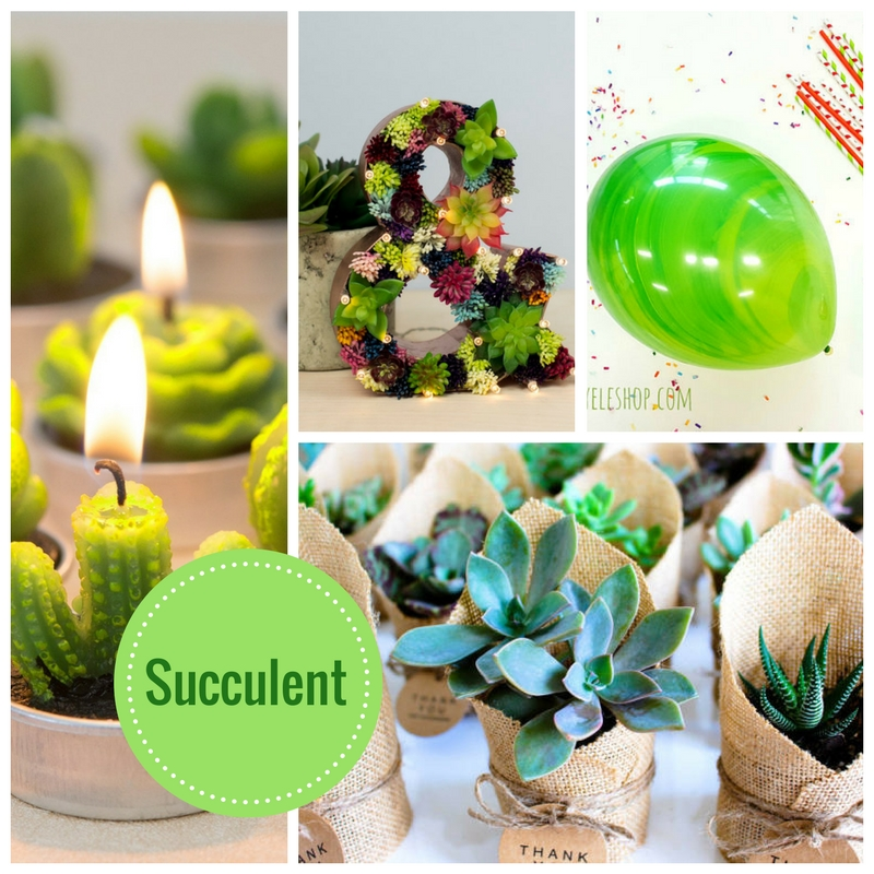 succulent-baby-shower-decoration-idea-collection