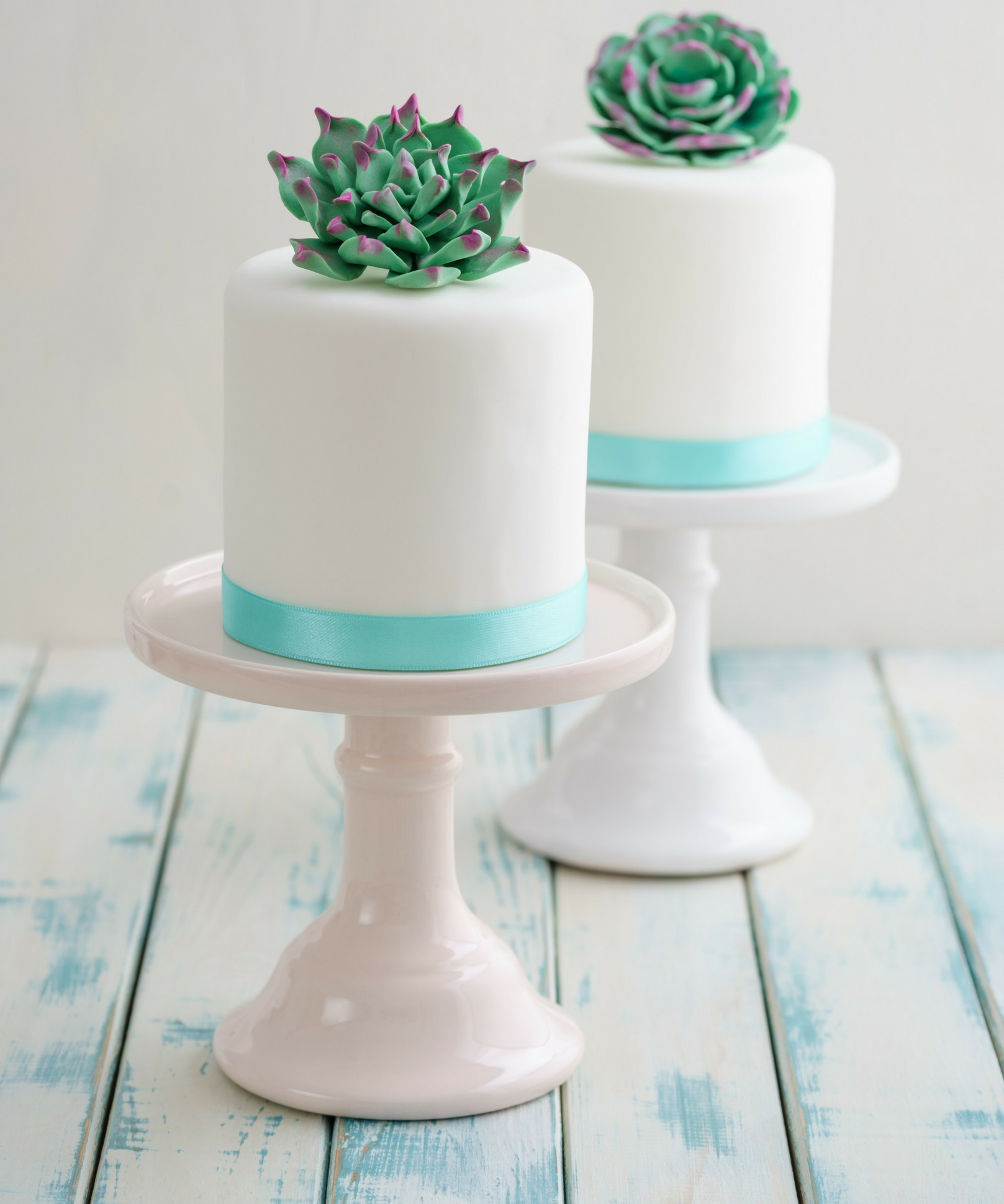 succulent-baby-shower-cake-ideas