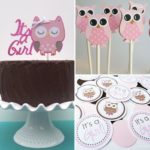 Owl Themed Baby Shower Decorations and Party Favors