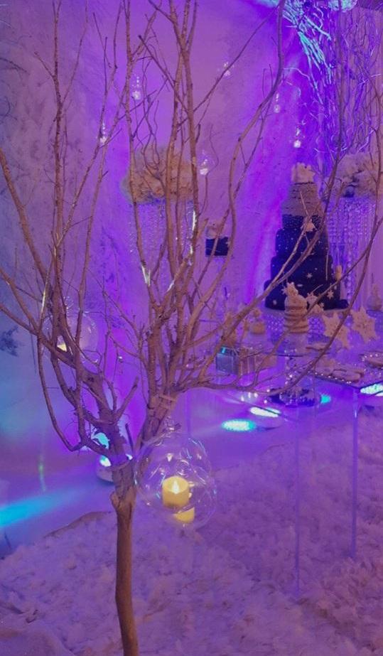 winter-wonderland-baby-shower-decoration-tree-branch