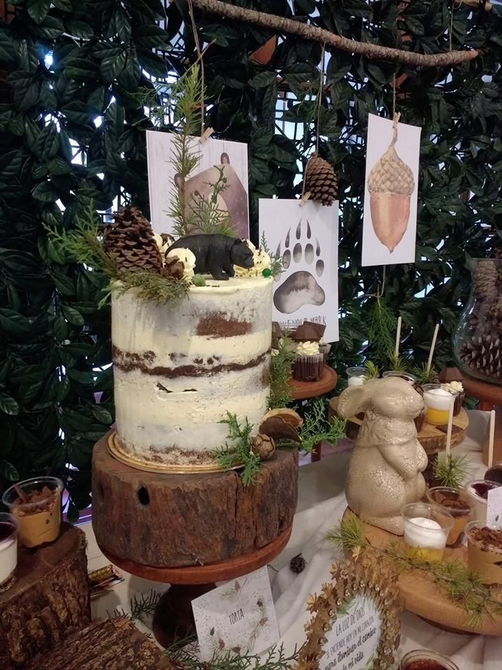 play-in-the-forest-party-naked-cake