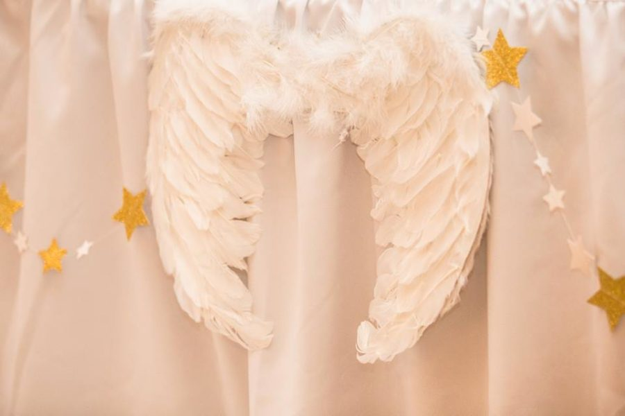 angelic-pink-baby-shower-wings
