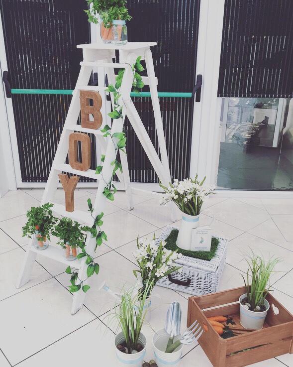 its-a-boy-ladder