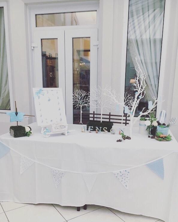 peter-rabbit-baby-shower-garden-themed-decors