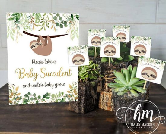 Sloth Baby Succulent favors