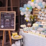 Sweet Baby Blue Owl Shower