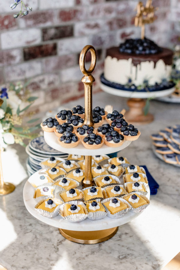 blueberry-treats-and-snack