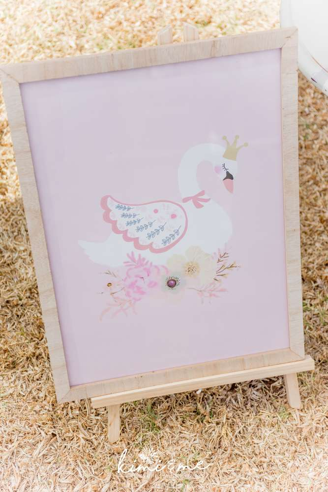 sweet-swan-princess-shower-customized-graphic