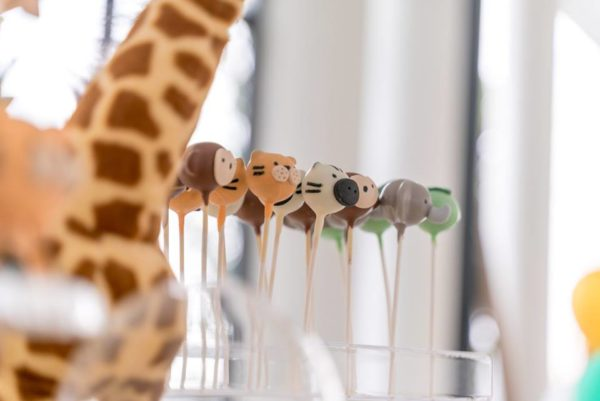 adorable-safari-animal-sweets-cakepop-sweet
