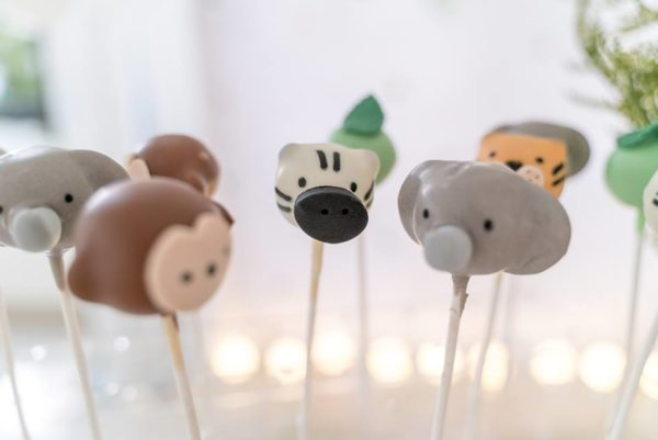 adorable-safari-animal-sweets-cakepops