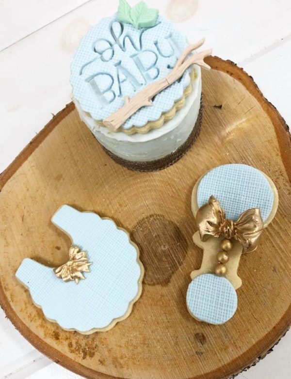boy-rustic-baby-shower-cookies-pastel-blue