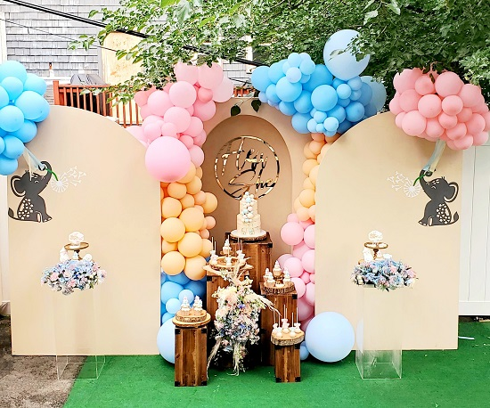gorgeous outdoor gender reveal party